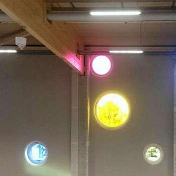 Farbige Fassaden-Lichtkuppeln bei Bennis Playland in Ingolstadt