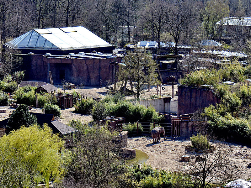 Zoo Münster