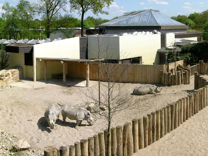 Gehege Zoo Münster